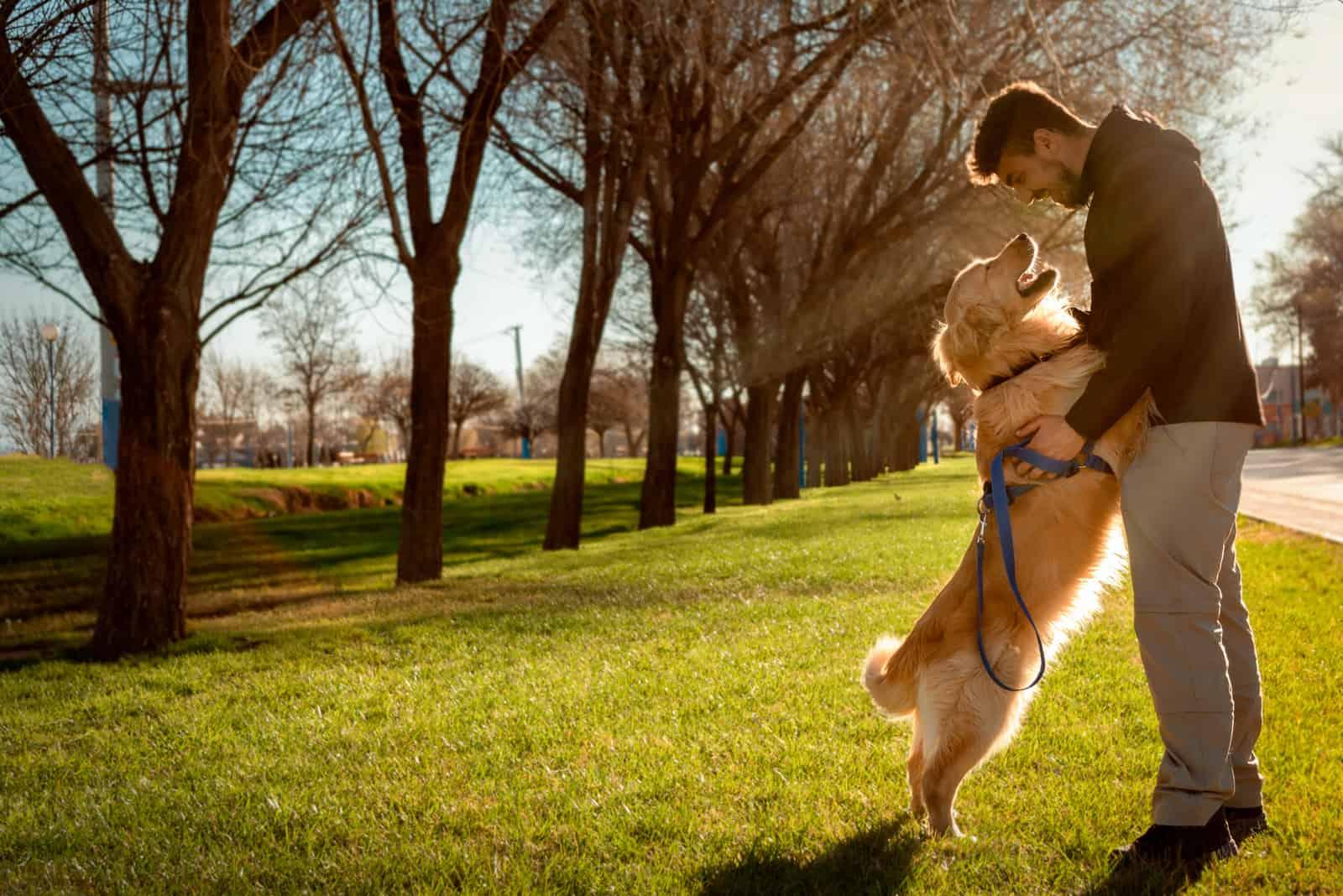 Hund (Golden Retriever) und Mann starren sich auf schöne Weise an.
