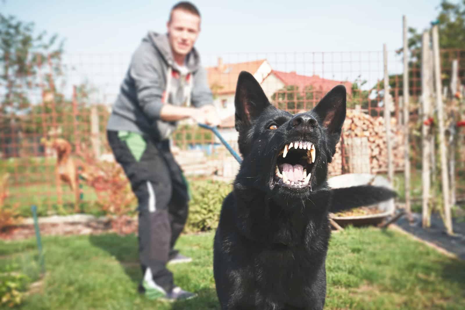 Junger Mann mit wütendem schwarzen Hund an der Leine.