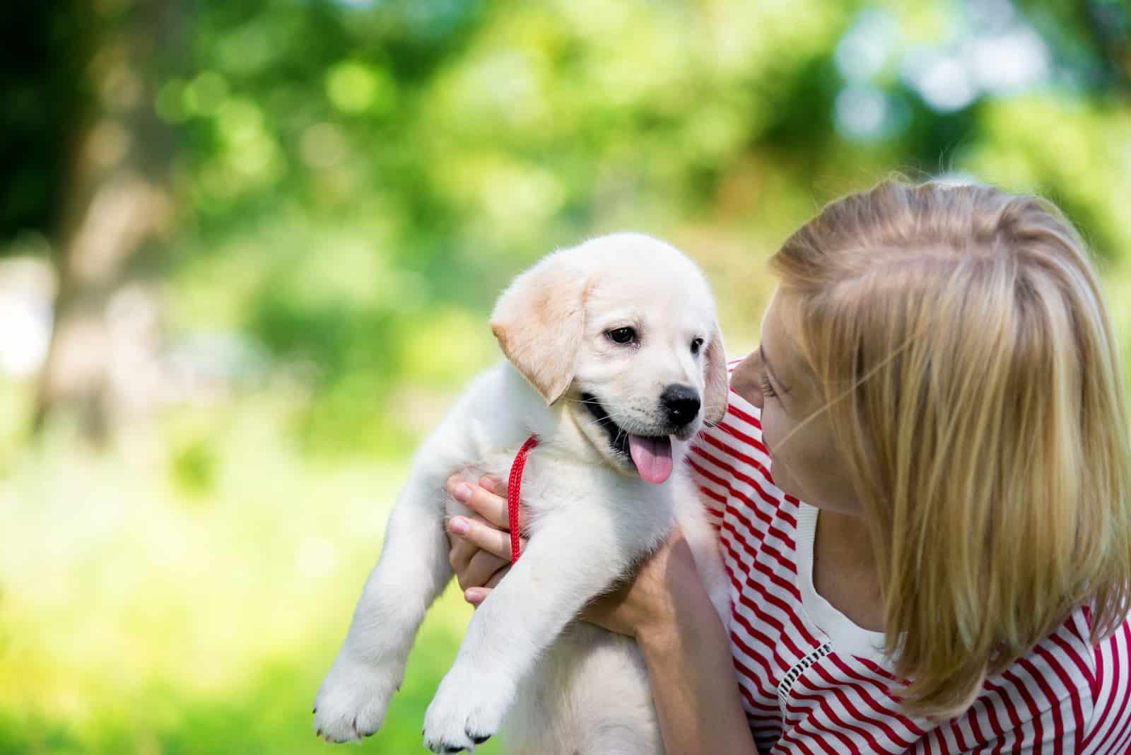 junge schöne Frau mit einem weißen Welpen Labrador Retriever