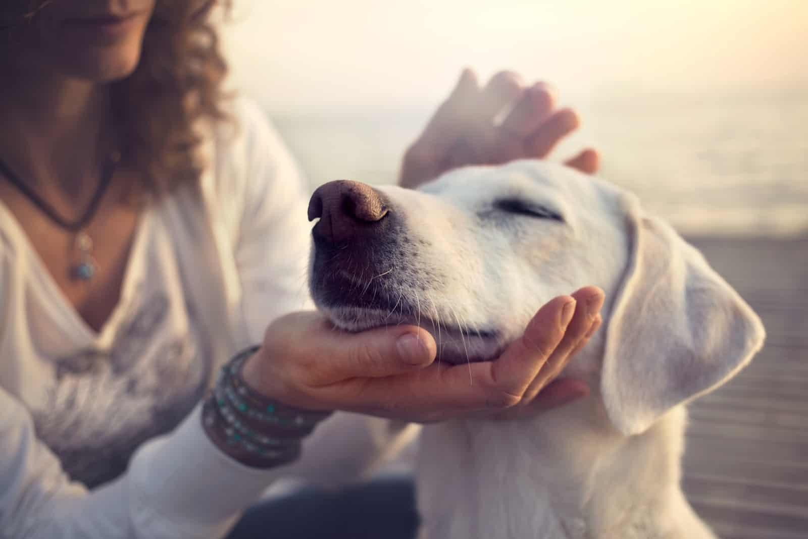 Frau kuschelt ihren Hund