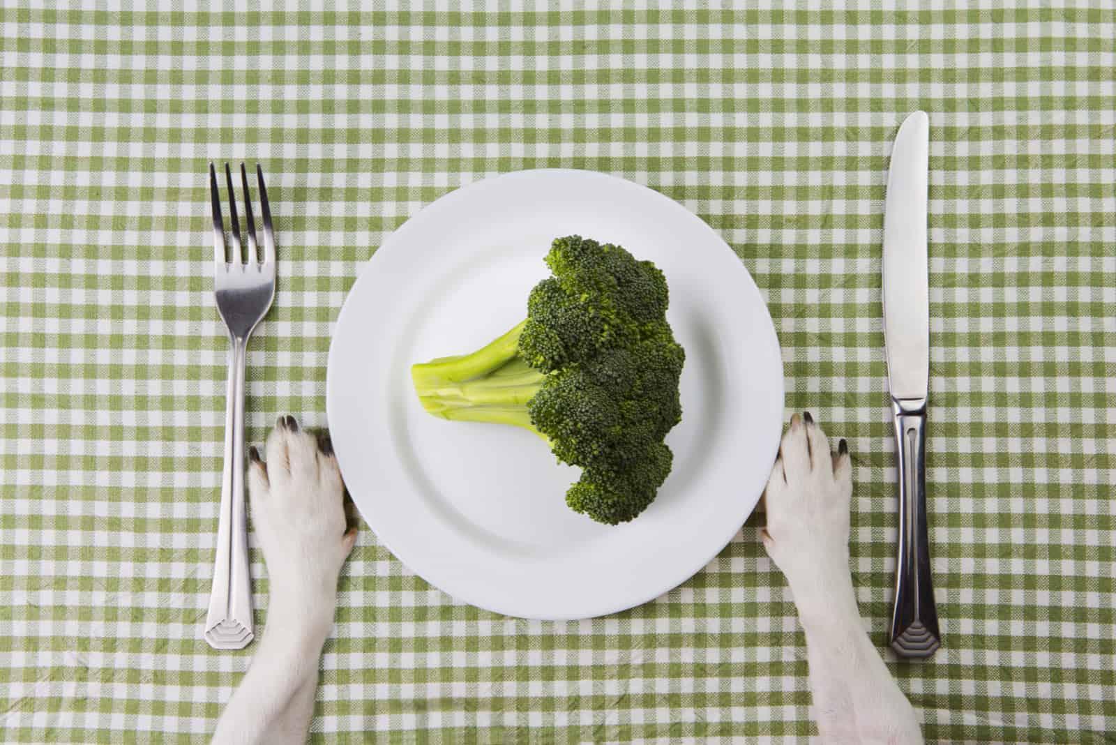 Teller Brokkoli. Gemüsediät.