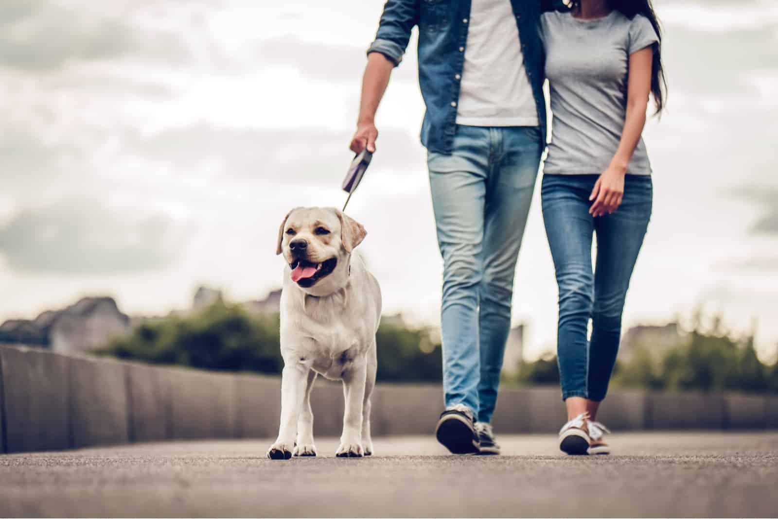 romantisches Paar ist mit ihrem Hund auf einem Spaziergang in der Stadt
