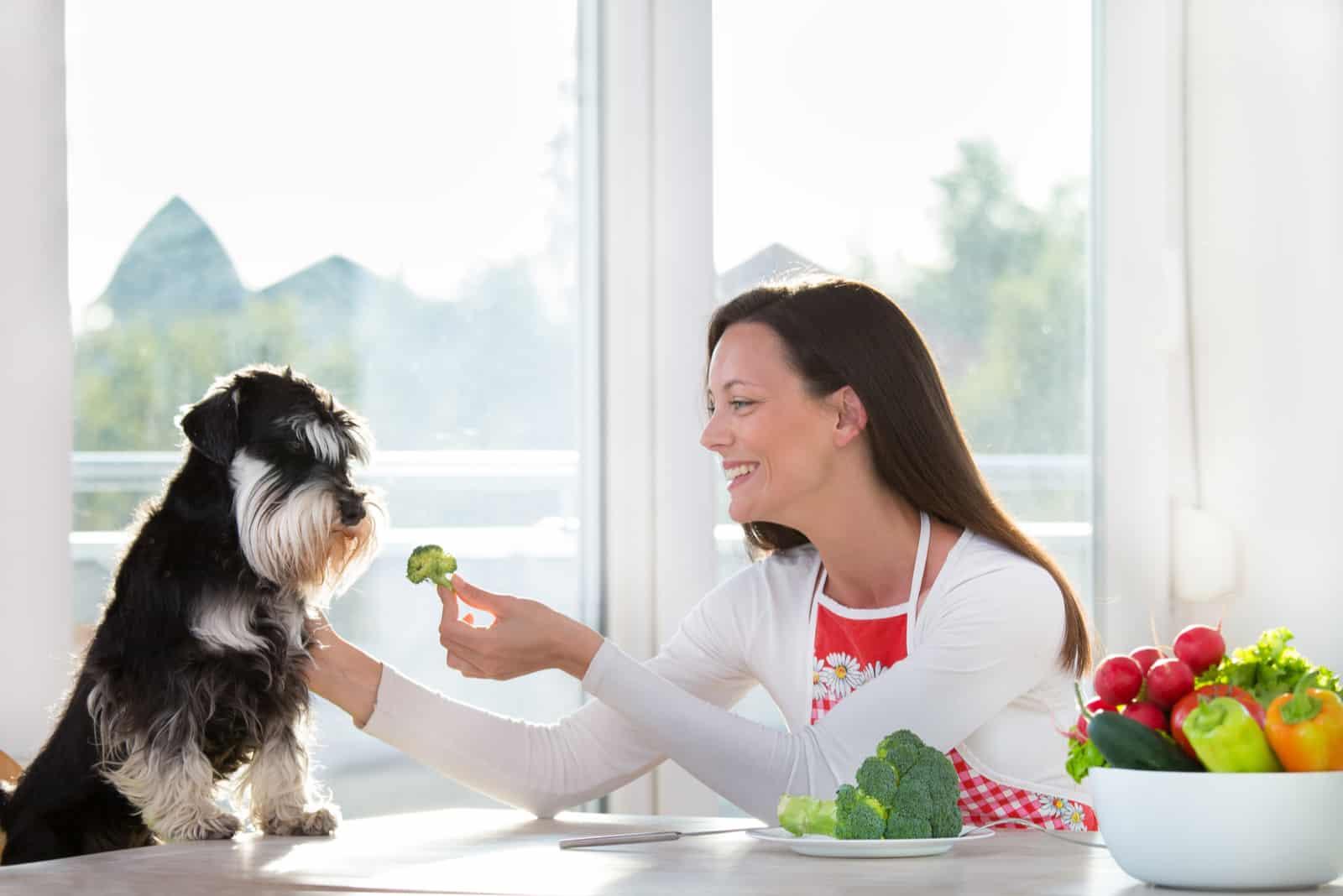 Frau, die einem Hund am Esstisch Brokkoli gibt