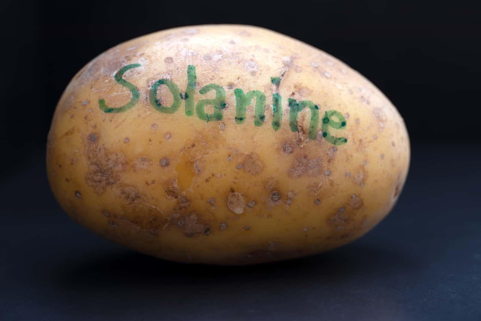Kartoffel und Solanin, erhöhte Produktion, wenn sie Licht ausgesetzt wurden