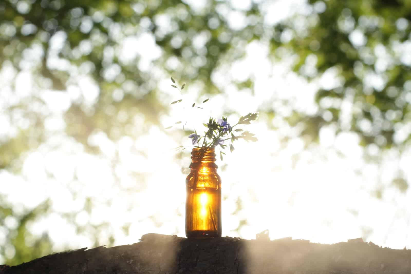 Ätherisches Öl und medizinische Blumen Kräuter