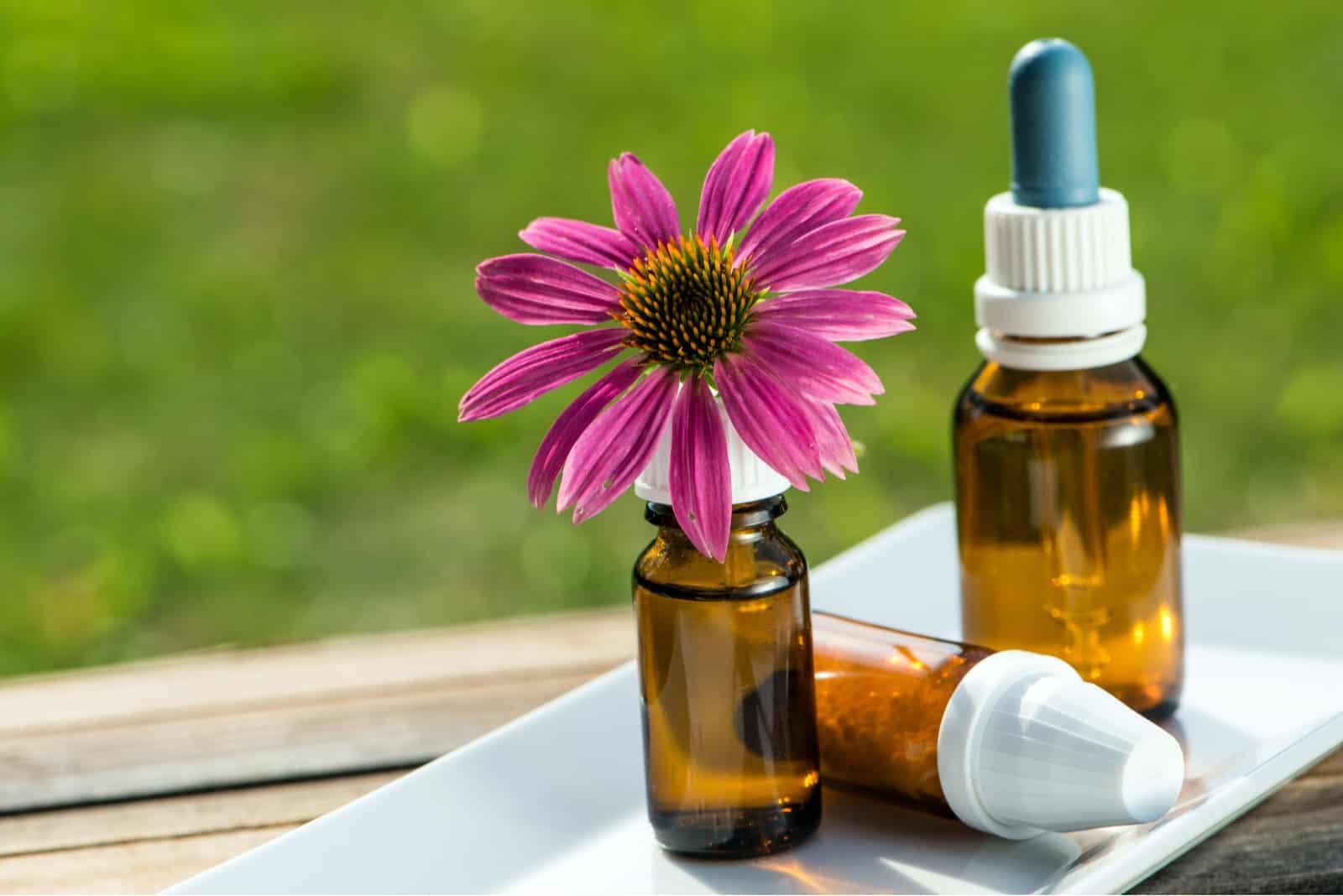 Alternativmedizin mit Blüte