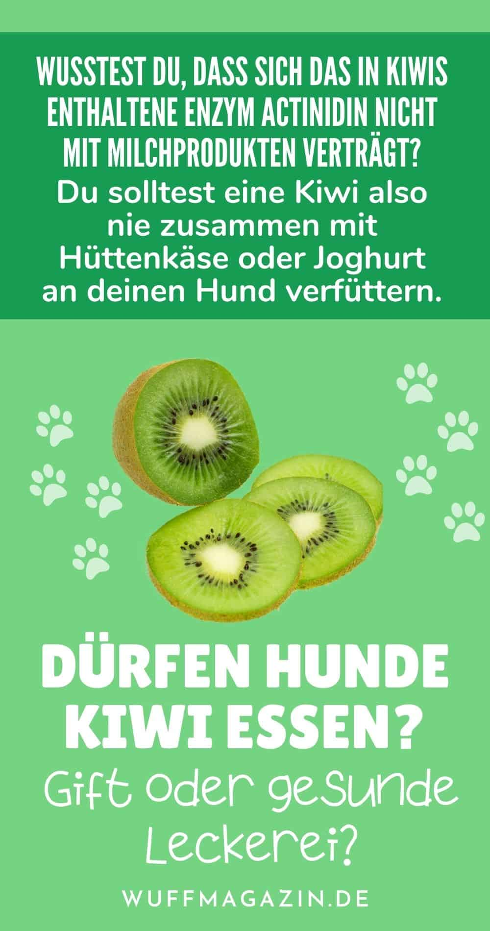 Dürfen Hunde Kiwi essen Gift oder gesunde Leckerei