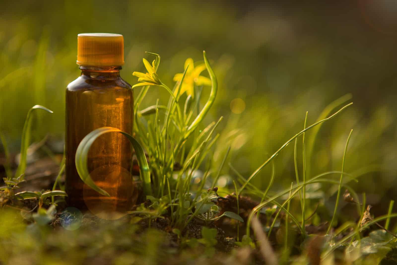 Naturmedizin in der Flasche