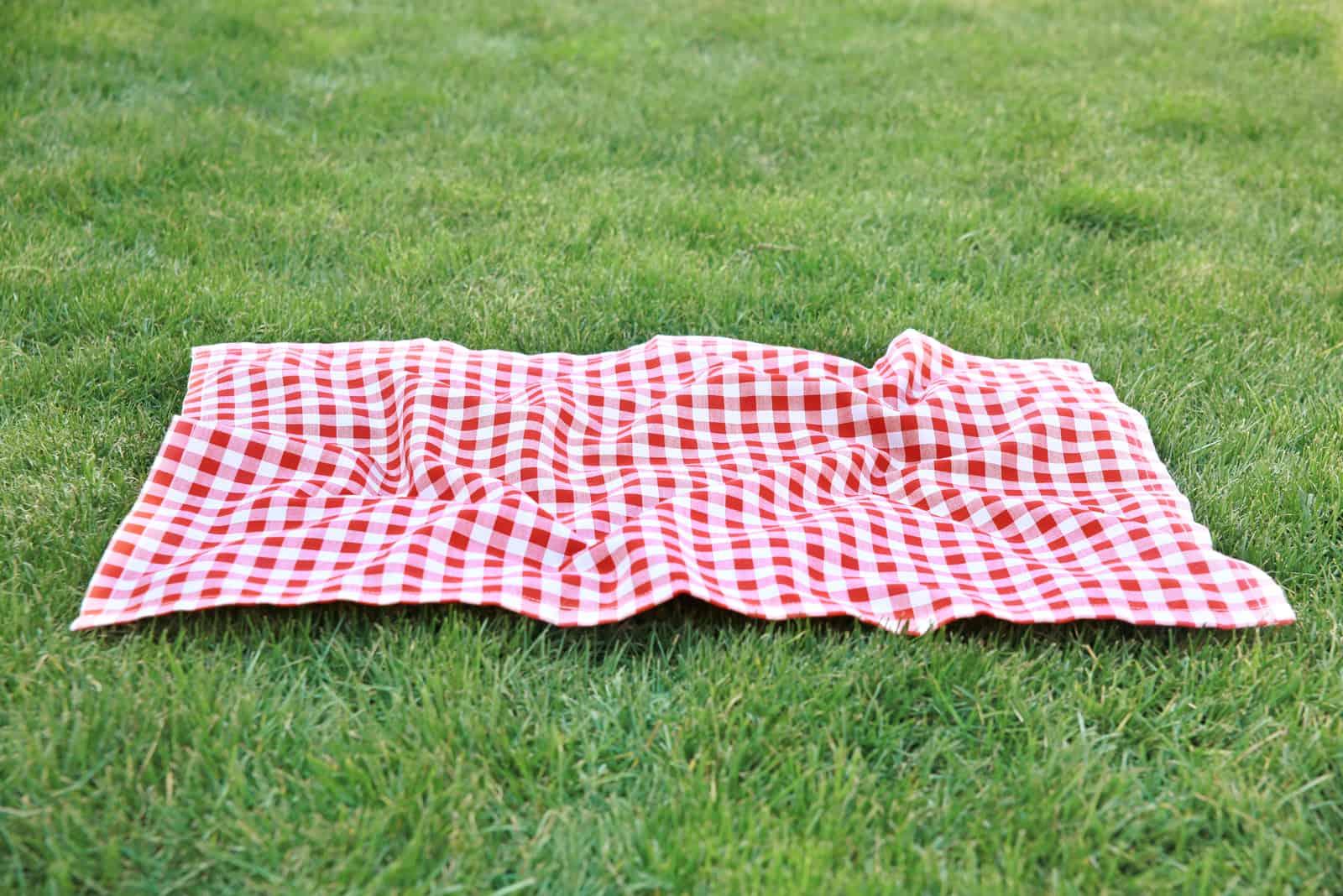 Decke auf grünem Gras