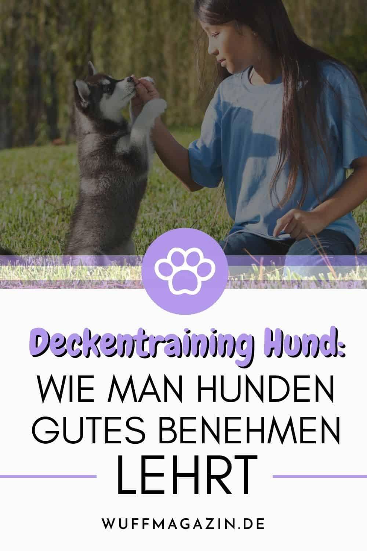 Deckentraining Hund Wie man Hunden gutes Benehmen lehrt
