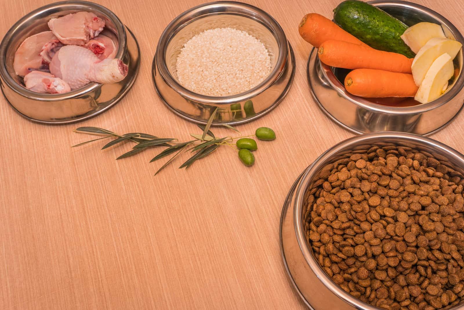 Lebensmittel in Edelstahl-Feedern mit Hühnchen, Reis, Karotten, Gemüse und Kürbis zubereitet
