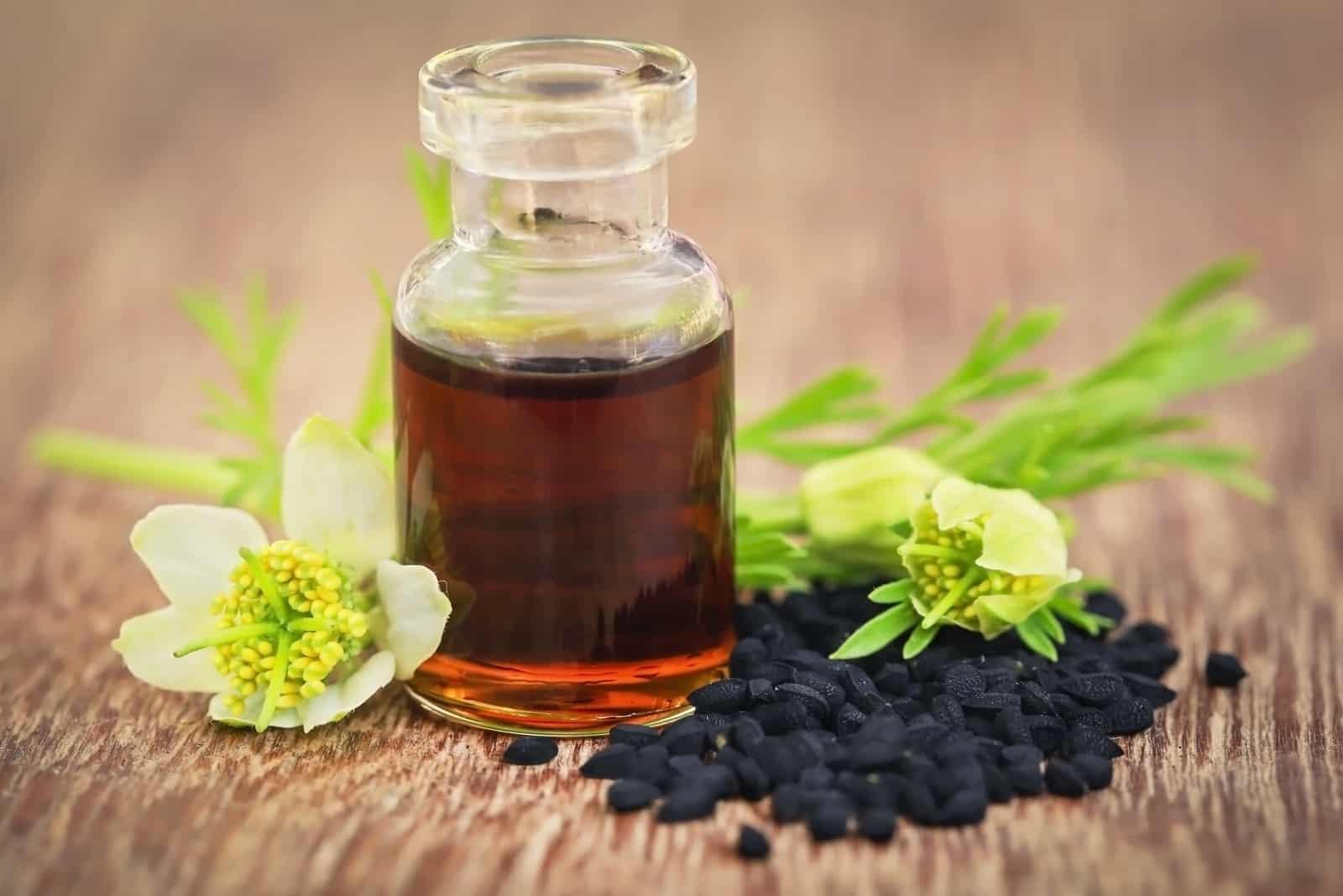 Nigella-Blume mit Samen und ätherischem Öl in einer Glasflasche